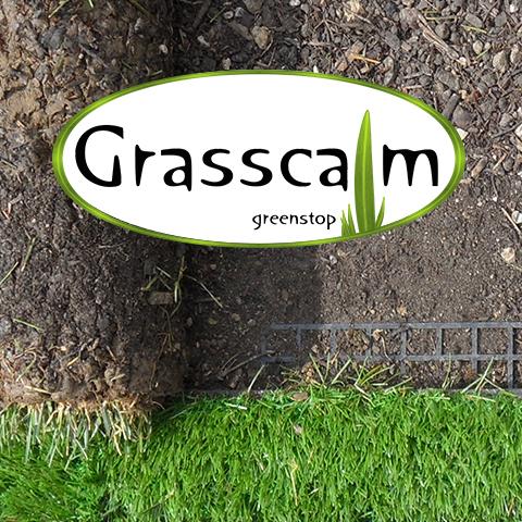 Green thumb up: 3D BIM CAD models of Grasscalm artificial