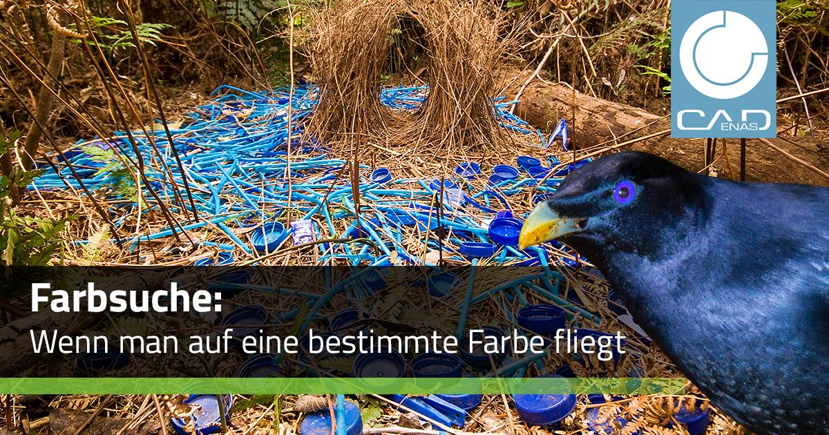 Farbsuche